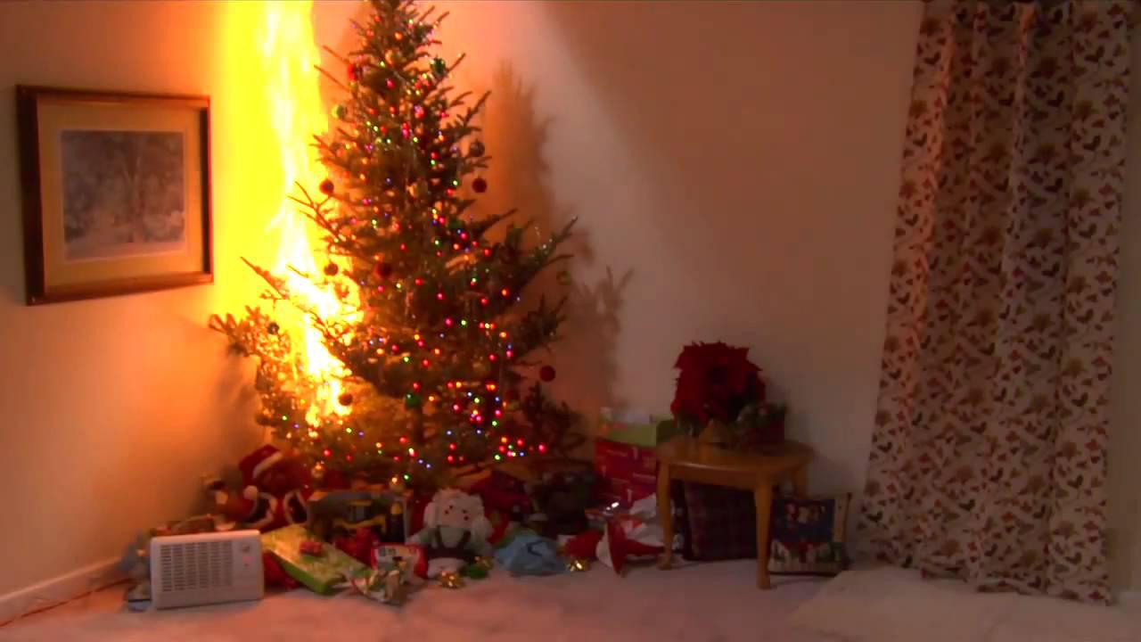 Undgå brand i juletræet med disse 8 råd du ikke må ignorere